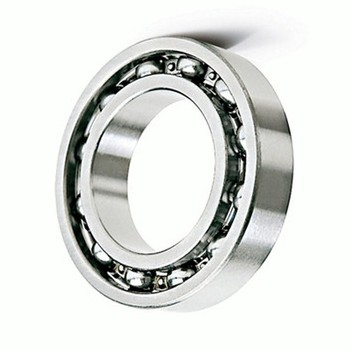 SKF Ball Bearing (6304 6305 6306 6307 6308 6309 6310 6311 6312 6313 6314 6315)