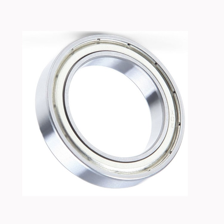 China Brand SKF, NSK, NTN, Koyo NACHI 6001 6002 6003 6004 6201 6202 6203 Deep Groove Ball Bearing