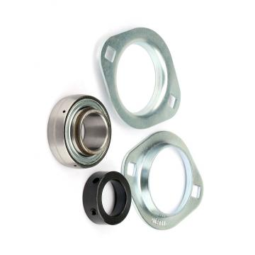 SKF NSK NTN Koyo NACHI Timken P5 Quality 6815 6915 16015 6015 6215 6315 6415 Zz 2RS Rz Open Deep Groove Ball Bearing
