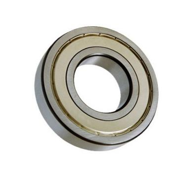 Carbon Bearing Stainless Steel Factory Custom Double Row 7204 Angular Contact Ball Bearing