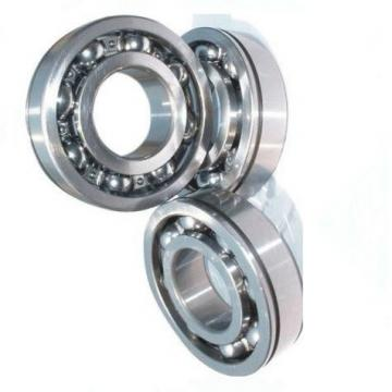 Wholesale Long Life Large Stock NTN Deep Groove Ball Bearing 6303 Lua 6000 6200 6300 Series Bearing