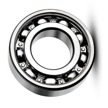 Japan NTN Bearing 6303-RS/2RS/Zz Deep Groove Ball Bearing 6303