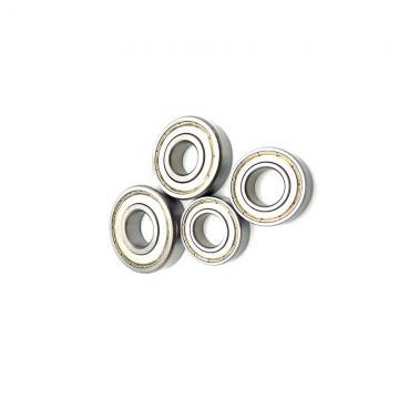 Single Row Cylindrical Roller Bearing NU 319 ECML NU/319 ECML NU 319