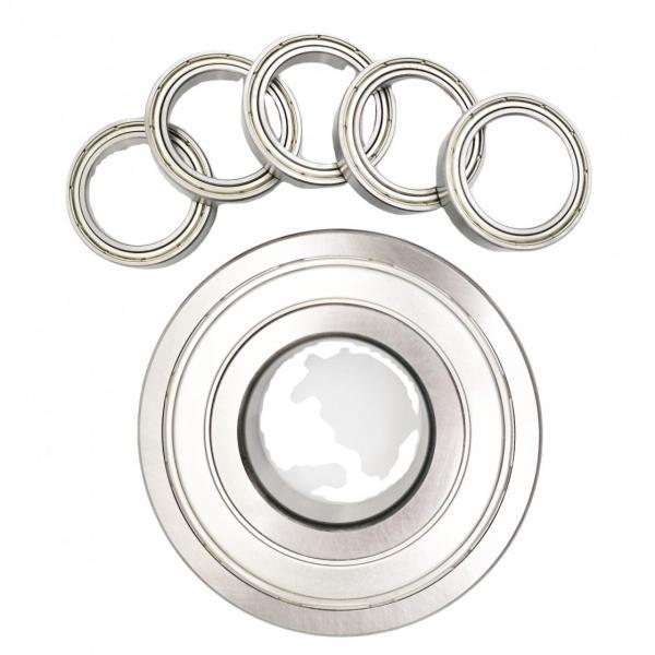 nsk 6202 good quality deep groove ball bearing 6202ddu #1 image