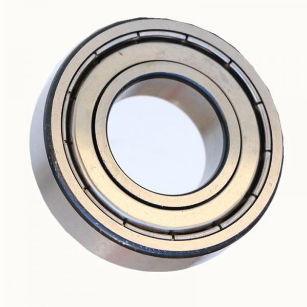 6004 SiN full ceramic bearing #1 image